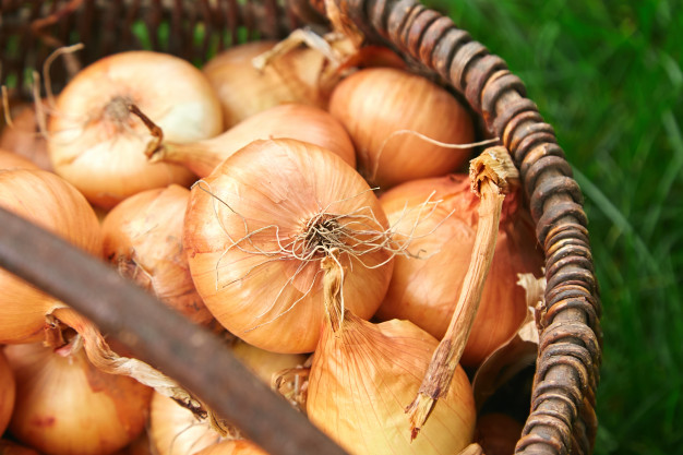 Realiza en casa tu propio champú de cebolla para un cabello fuerte y saludable