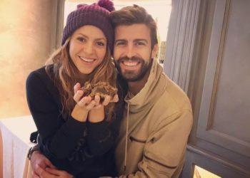 Si no te presume como Piqué a Shakira, no te merece: el astro del fútbol publica foto de la cantante sin retoques